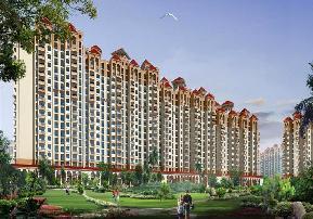 Amrapali Group Amrapali Silicon City  Sector 76 Central Noida Noida